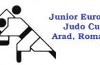 Logo Cupa Arad